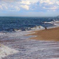Пустынный пляж :: Дарья Фисун
