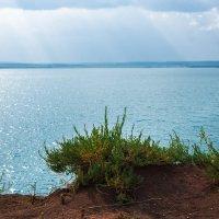 Как прекрасен этот мир! :: Борис Кононов