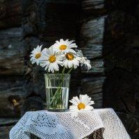 Любимые цветы :: Hanna Prakapovich