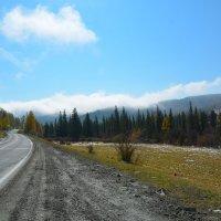 С Семинского перевала в долину. :: Валерий Медведев
