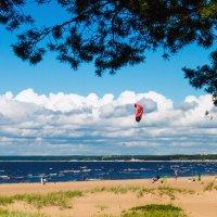 Северо-западное лето 2 :: Виталий