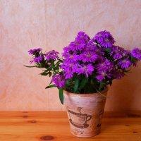 Фиолетовые цветы в винтажном горшочке :: Nina Yudicheva
