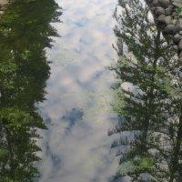 отражение с облаками :: Елена