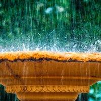 Дробятся струи в водяную пыль, чтоб разлететься брызгами по ветру :: Дмитрий Костоусов