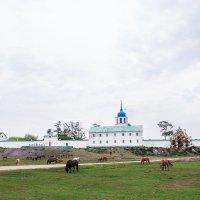 Посольский мужской монастырь :: Екатерина Просвирнина
