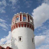 Башня  Новодевичьего монастыря :: lady-viola2014 -