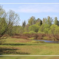 Весна... :: Александр Широнин