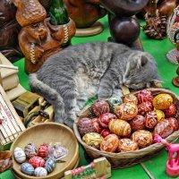 По чём нонче коты? :: Alexandr P