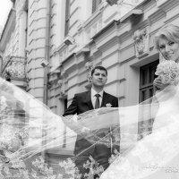 свадьба :: Сергей Клементьев