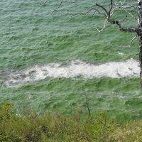 Вот такая сегодня вода в Волге - а так хотелось искупаться. :: Сергей Исаенко