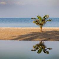 А я одна стою ....на берегу.... :: Глеб Часовитин