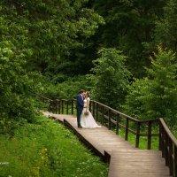 Свадьба :: Михаил Герасимов