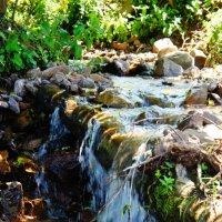 Водопад в лесу, Карачаево-Черкессия :: Дарья :)