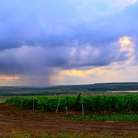Дождь приближается :: Виктор Шандыбин