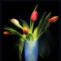 Тюльпаны :: Андрей Окороков