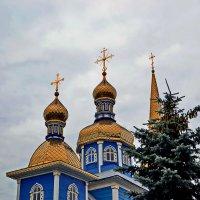 Золотые купола. :: Сергей F