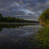 Облачным утром на Клязьме. :: Igor Andreev