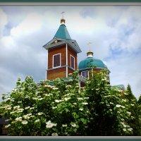 в цветущем лете :: Александр Прокудин