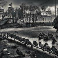 Вербное.. :: Константин Водолазов