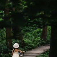В сказочном лесу :: Алеся Макина