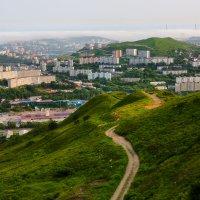 "Вид с сопки ""Холодильник"" на Владивосток :: Mikhail"