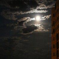 Июльская ночь :: Татьяна Ломтева