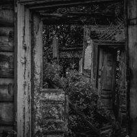 Дверь в прошлое :: Елена Яшнева