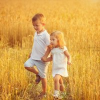 Пшеничные прогулки :: Светлана Светленькая