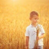 Прогулка на пшеничном поле :: Светлана Светленькая