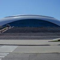 Ледовый дворец «Большой» :: Puma V.