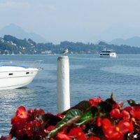 Люцерн (Luzern), озеро в Швейцарии; более распространённое название ≈ Фирвальдштетское озеро :: Елена Павлова (Смолова)