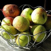 Яблоки на солнышке :: Наталья