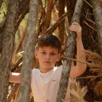 В лесу :: Ануш Хоцанян