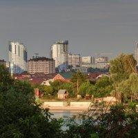 июль :: Алексей Меринов