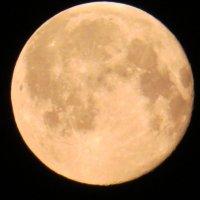 луна в полнолуние :: Странник Скромняга