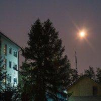 Ночидень :: Дмитрий Костоусов