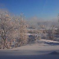 Январский морозный денёк... :: Александр Попов