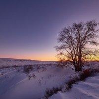 Зимние цвета заката! :: Виктор Гришенков
