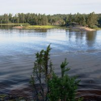 Следы на воде :: Леонид Макаров