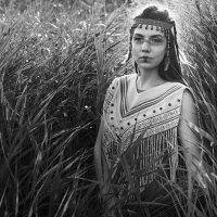 WildIndian :: Ivan teamen
