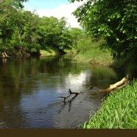 река Лучёса :: Злата Красовская