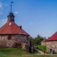 крепость Корела :: Irina Novikova