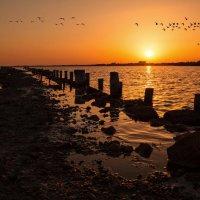Над вечерним озером. :: Svetlana Sneg