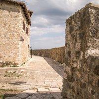 Прогулка по старой крепости :: Gennadiy Karasev