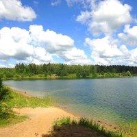 Рукотворное озеро, берег левый :: Маргарита Батырева