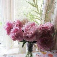 Розовый натюрморт :: Дмитрий Никитин