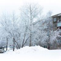 Немного зимнего холода, в жаркий летний день! :: Ирина Антоновна