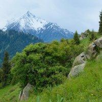 вид в горах Алматы :: Горный турист Иван Иванов