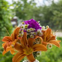 Квіти :: Christina Terendii