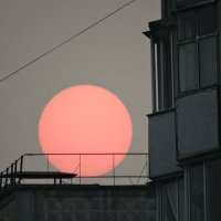 солнце в дыму :: Alla Swan